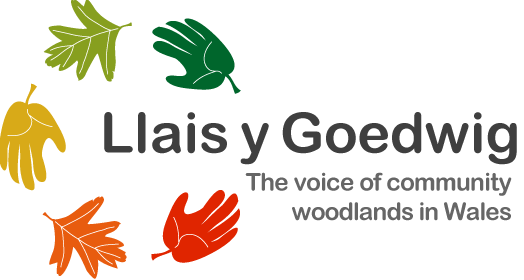 Llais y Goedwig